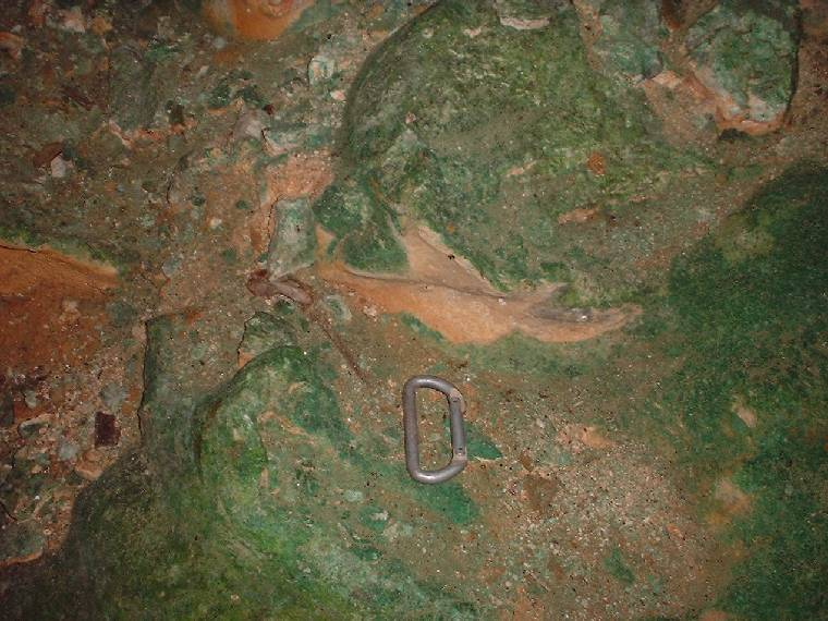 Algae in Barrow's Cave, May 10, 2003