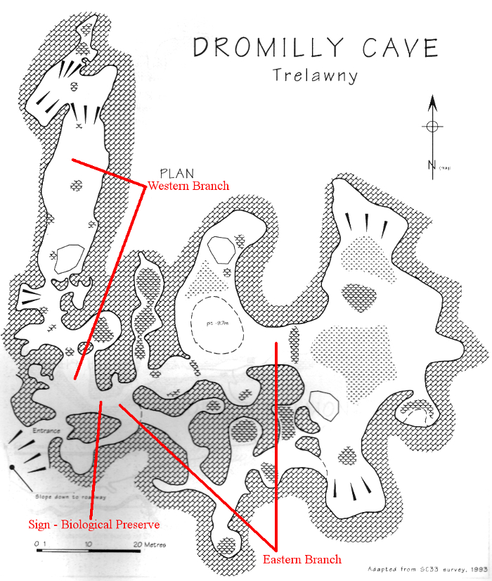 Dromilly Cave