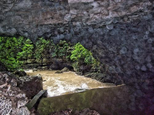 The Entrance to Riverhead Cave, in Flood - Photo by Jan Pauel